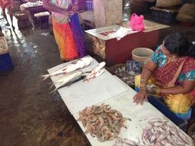 Goa Fish market 2013